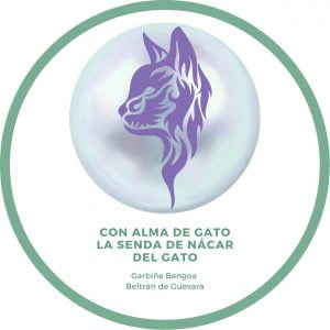 curso con alma de gato