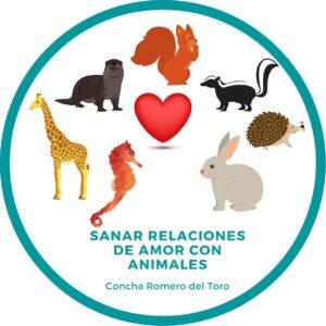 sanar las relaciones de amor con animales